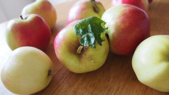 Vilda äpplen plockade intill en strand i Frölunda