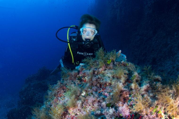 Sylvia Earle El Toro Marine Reserve (c)kipEvans for Mission BlueAG4V5527.jpg