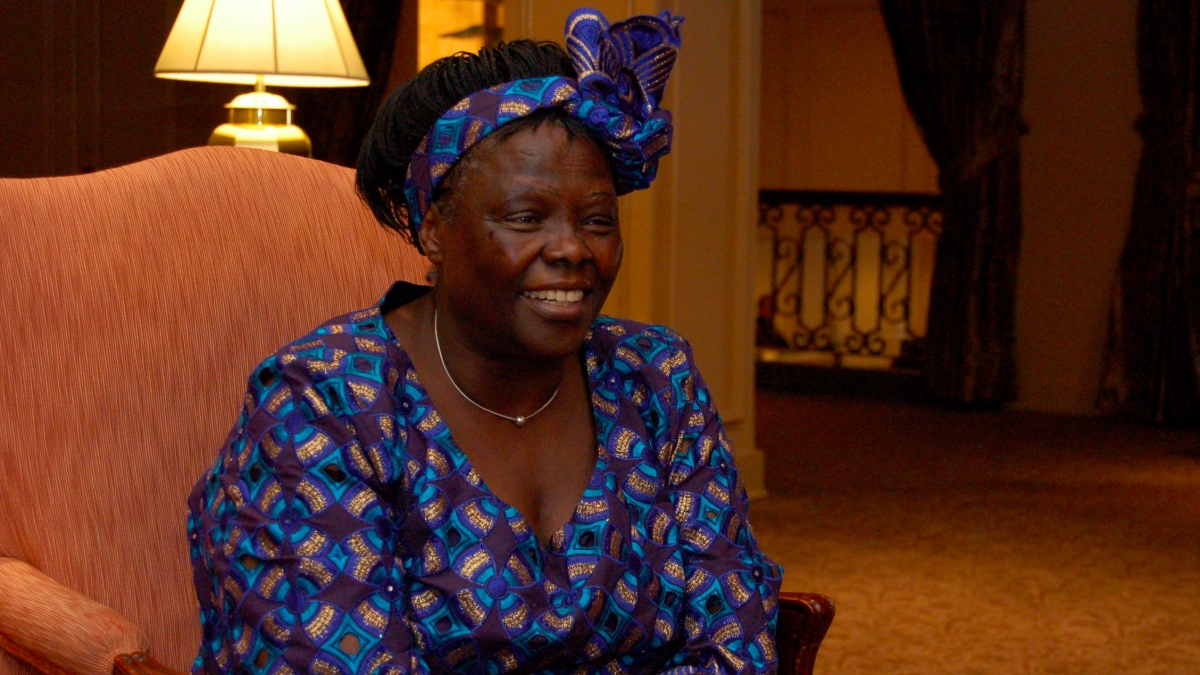 Wangari Maathai environmental heroine