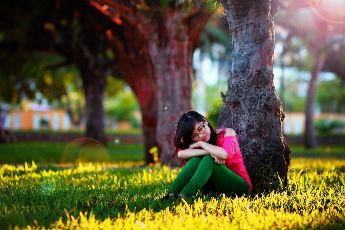 kärlek träd ulmus
