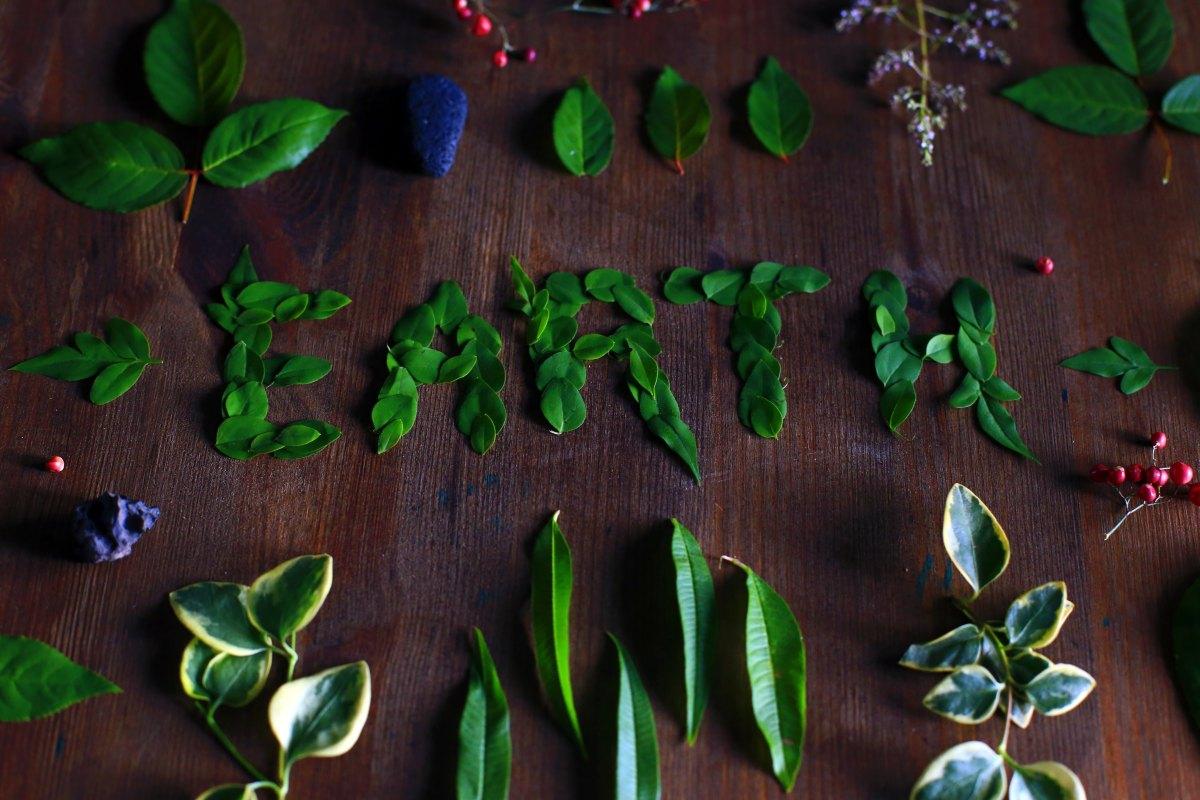 Miljöblogg