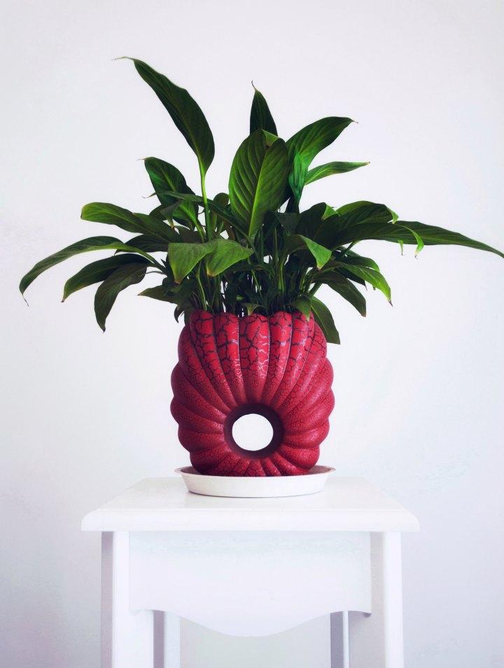 plantor luftrenare fredskalla